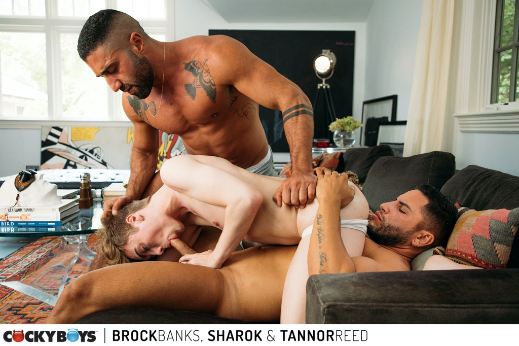CockyBoys – Tannor Reed, Brock Banks, Sharok