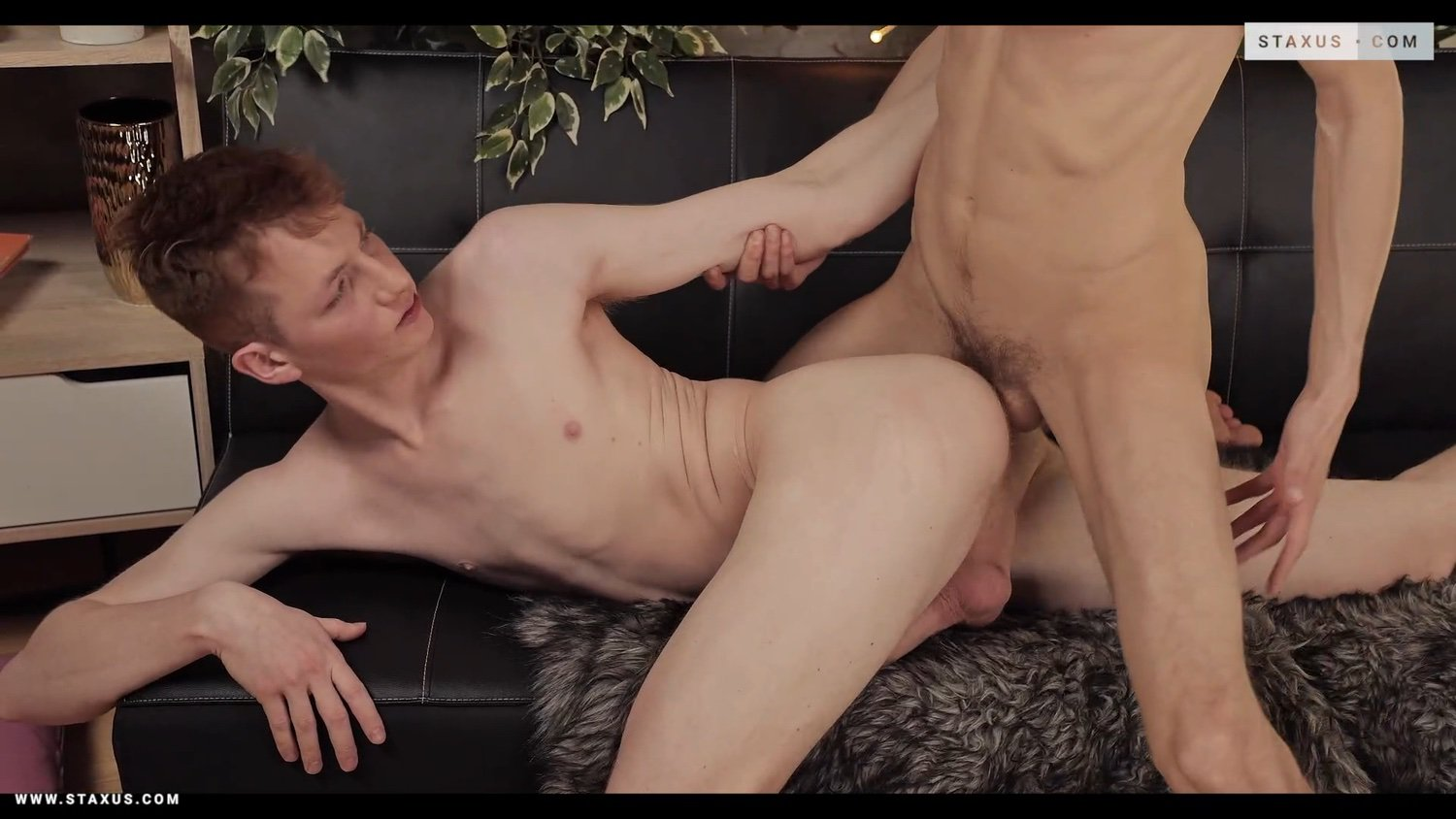 Staxus – Danny Royt, David Hollister